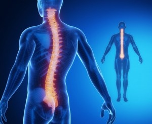 What are the causes of neck and back pain